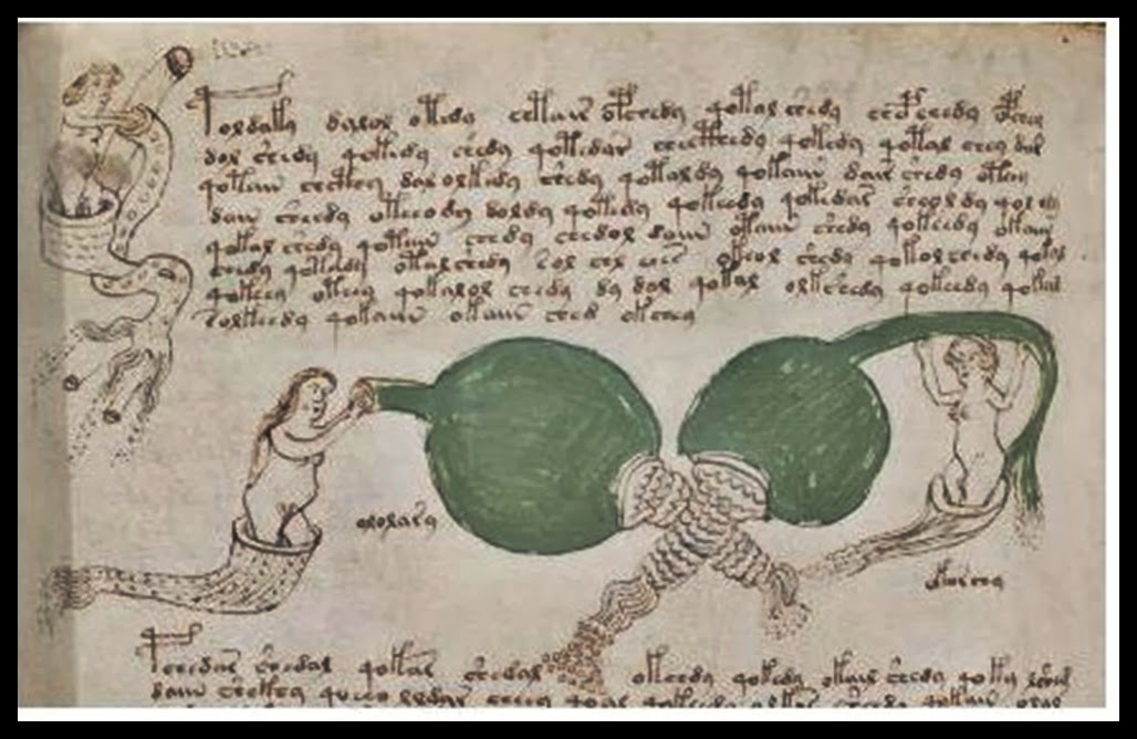How To Crack The Voynich Code And How Not To Stephen Bax